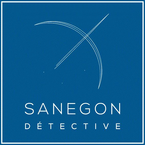 Sanegon Conseil
