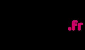 logo netlinking.fr