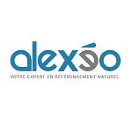 Consultant SEO - Agence web - Alexeo